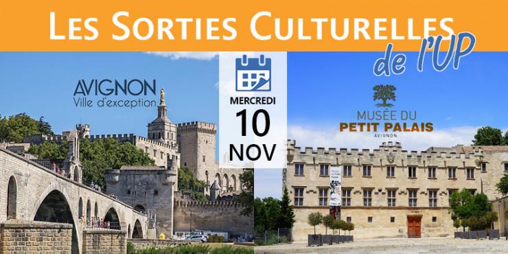 10/11   Les sorties Culturelles de l'UP : Avignon