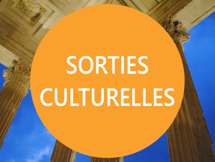 Sorties culturelles