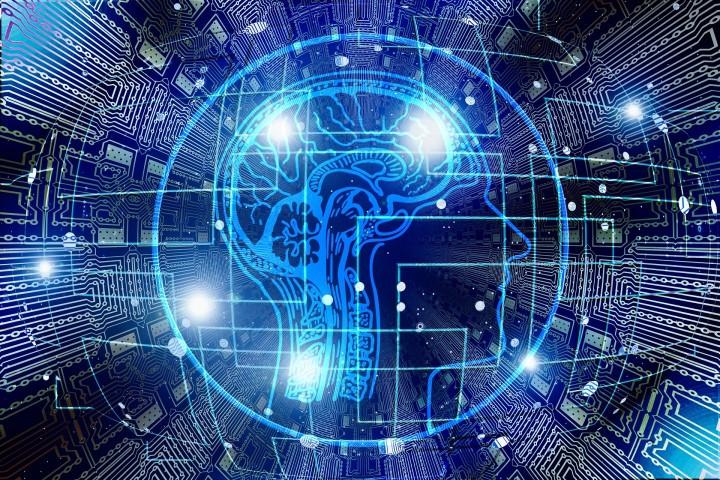 Le cerveau et ses maladies